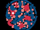 logo-ARC-prozrachniy-fon-e1327608697731